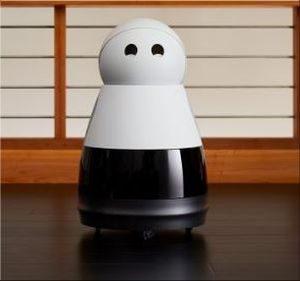 Kuri de robot