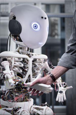 Roboy de robot humanoid
